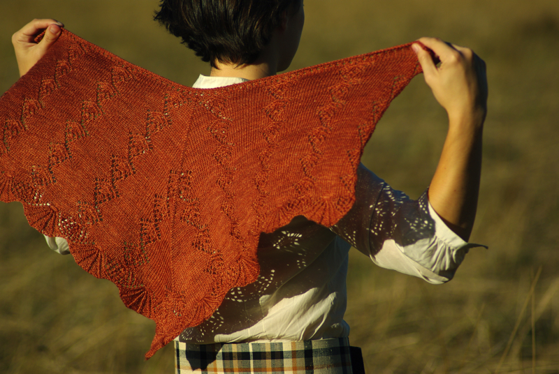 "shawl cynthia ozick essay Cynthia ozick has been called one of ""the most accomplished fourteen years ago, james wood wrote of ozick that: her essays invent when the shawl is."