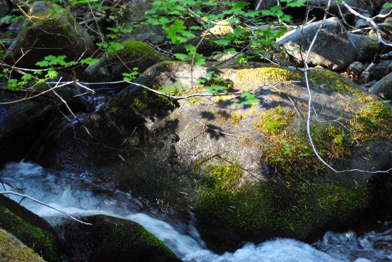 trapperrock.jpg